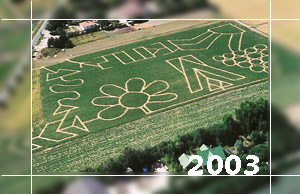 Maislabyrinth 2003